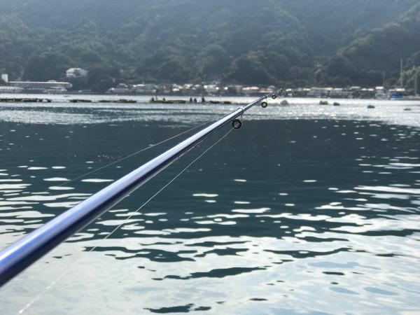 アミ姫で釣り開始