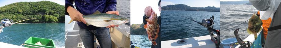 海釣り王 ~海釣り・釣り船初心者のための情報サイト~